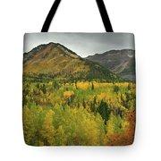 Mount Timpanogos Fall Colors Tote Bag
