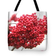 Mountain Ash Berries Tote Bag