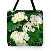 Mountain Ash Blossoms Tote Bag
