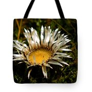 Mountain Thistle French Pyrenees Tote Bag
