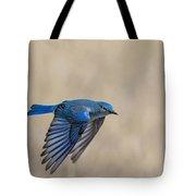 Mountain Bluebird Male In Flight Tote Bag
