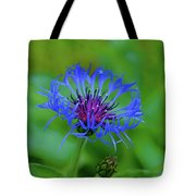 Mountain Cornflower Tote Bag by Byron Varvarigos
