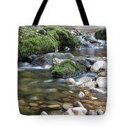 Mountain Creek Spring Nature Scene Tote Bag