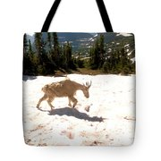 Mountain Goat Crossing A Snow Patch Tote Bag