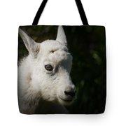 Mountain Goat Kid Portrait Tote Bag