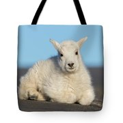 Mountain Goat Kid Relaxes In The Road Tote Bag
