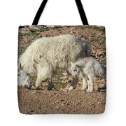 Mountain Goat Kid Stretches By Mom Tote Bag