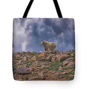 Mountain Goat Overlook Tote Bag