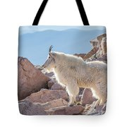 Mountain Goat Takes In Its High Altitude Home Tote Bag