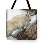 Mountain Goat With Grace Tote Bag