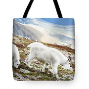 Mountain Goats 1 Tote Bag