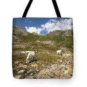 Mountain Goats At Columbine Lake - Weminuche Wilderness - Colorado Tote Bag