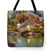 Mountain Goats In Early Fall Tote Bag
