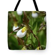 Mountain Lady Slippers Up Close Tote Bag