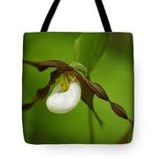 Mountain Lady's Slipper Tote Bag