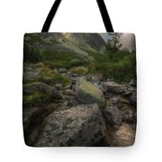 Mountain Landscape With A Creek Tote Bag
