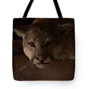 Mountain Lion A Large Graceful Cat Tote Bag