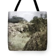 Mountain Lion Country Tote Bag