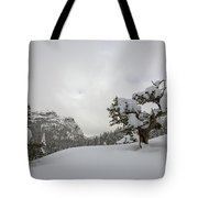 Mountain Lonely Tree Tote Bag