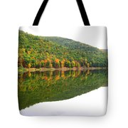Mountain Mirror Tote Bag