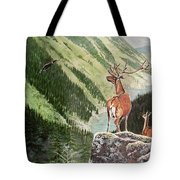 Mountain Morning Tote Bag