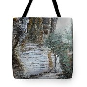 Mountain Pass Tote Bag