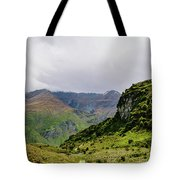 Mountain Path Vert Tote Bag