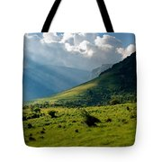 Mountain Rays Tote Bag by Evgeni Dinev