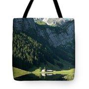 Mountain Sight Tote Bag