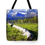 Mountain Splendor Tote Bag
