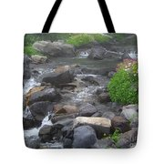 Mountain Stream Tote Bag by Charles Robinson