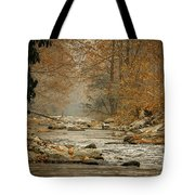 Mountain Stream With Tree Overhang #1 Tote Bag