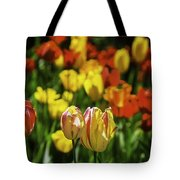 Mountain Tulips Tote Bag