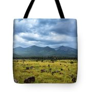 Mountain View After Rain Tote Bag