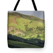 Mountain View From Gothic Road Tote Bag