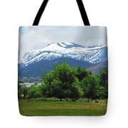 Mountain View - Reno Nevada Tote Bag
