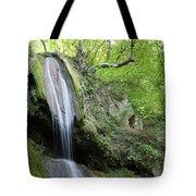 Mountain Waterfall Spring Nature Scene Tote Bag
