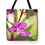 Mountain Wildflower In Summer Tote Bag