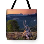 Mountain Wood Formation Tote Bag