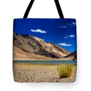 Mountains And Green Vegetation Chagor Tso - Lake Leh Ladakh Jammu Kashmir India Tote Bag