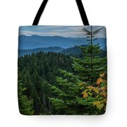 Mountains Around Priest Lake Tote Bag