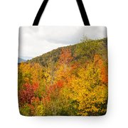 Mountains In The Fall Colors Tote Bag