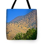 Mountainside From Wealthy Neighborhood Above Santiago-chile Tote Bag