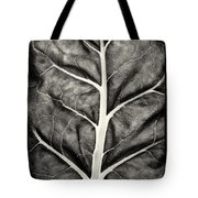 Mounts Botanical Garden 2374 Tote Bag