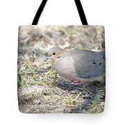Mourning Dove 2 Tote Bag