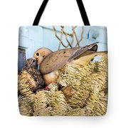 Mourning Dove And Chick Tote Bag