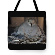 Mourning Dove With One Of Two Chicks Tote Bag