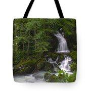 Mouse Creek Falls Tote Bag