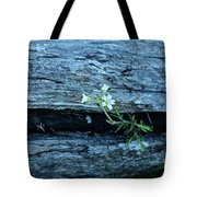 Mouse Eared Chickweed Tote Bag