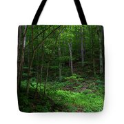 Mouth Of Pollly Hollow Tote Bag